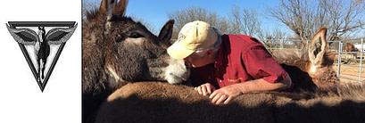 Pegasus Equine Veterinary Day