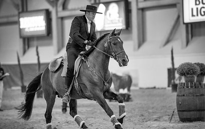 Working Equitation Clinic with Miguel Undabarrena